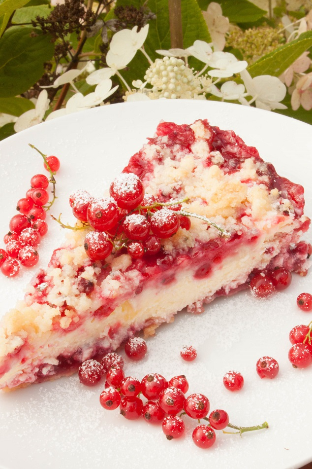 Streusel Cheesecake with Red Currant